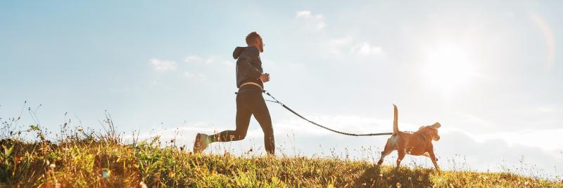 bewegen huisdier verzorgen